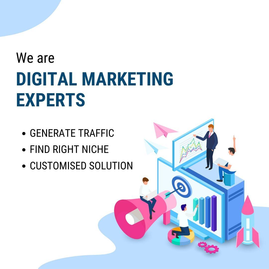 Implementation of digital marketing strategy by digital marketing experts, Udaipur